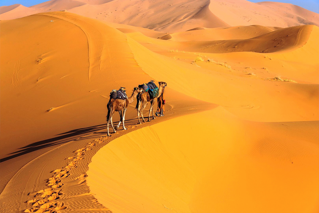 4-Day Desert tour from Marrakech to Merzouga